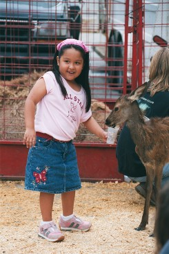Young Girl Feeding Animals at the Petting Zoo
